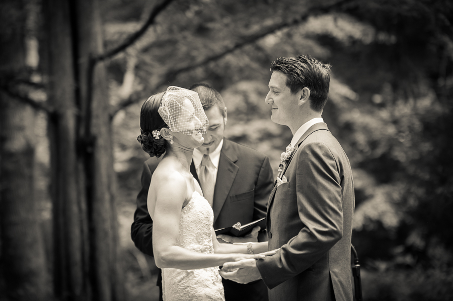 Old Mill Wedding, Rose Valley Wedding
