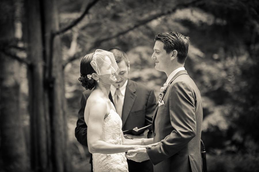 Old Mill Wedding, Rose Valley Wedding