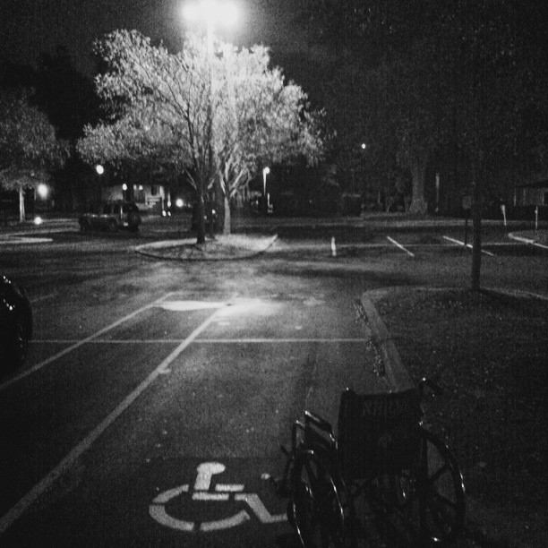 Parking lot with Tree and Wheelchair